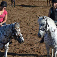 riding lessons langley